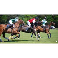 Hospitality Action to host Charity Polo Day in Cheshire
